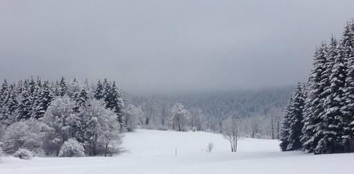 Premier trail blanc