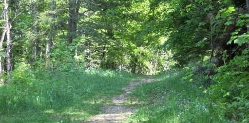 preparer premier trail