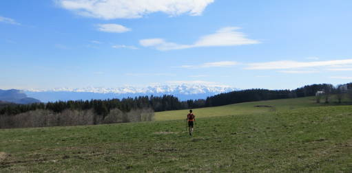 Planifier saison de trail