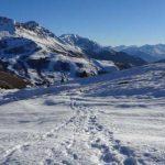 A quoi bon courir l'hiver ?